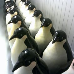 #penguins