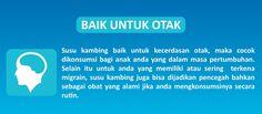 Susu Kambing Etawa Plus Propolis baik untuk Otak  Bisa di order disini https://shopee.co.id//20743315/