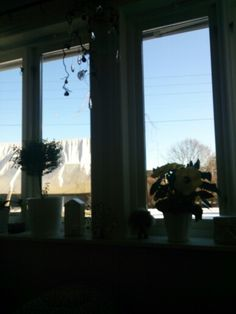 Kan ikke bare sitte inn å, se ut på dette fin været vell.. Nei, opp og ut på tur