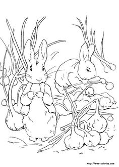 Stunning Rabbit Coloring Book 97 Peter Rabbit Coloring Pages