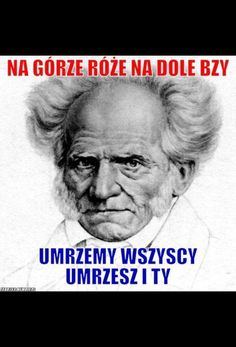 Meme Generation, Polish Memes, Weekend Humor, Past Tens, Depression Memes, Funny Mems, Grumpy Cat, True Quotes, Einstein