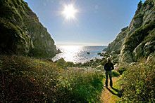 .:. Hiking in Big Sur - Partington Cove Trail .:.