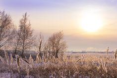 Frosty sunset by Natalia Flora on 500px