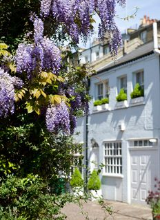 London mews property lettings management