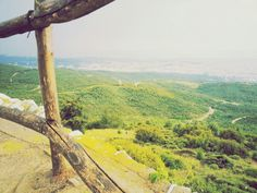 Seih Sou forest #top_view