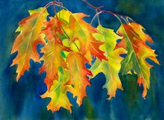 Watercolor Painting Fall Oak Leaves Autumn Colors by ssfreeman43, $100.00