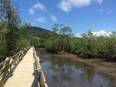 PARQUE NACIONAL NATURAL UTRÍA, CHOCÓ-COLOMBIA #landscaping