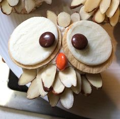 Vanilla Owl Cupcakes