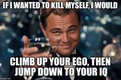 Leonardo Dicaprio Cheers | IF I WANTED TO KILL MYSELF, I WOULD CLIMB UP YOUR EGO, THEN JUMP DOWN TO YOUR IQ | image tagged in memes,leonardo dicaprio cheers | made w/ Imgflip meme maker