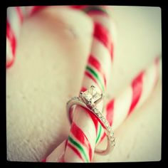 Holiday proposal idea. In love with this!