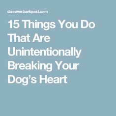 15 Things You Do That Are Unintentionally Breaking Your Dog's Heart