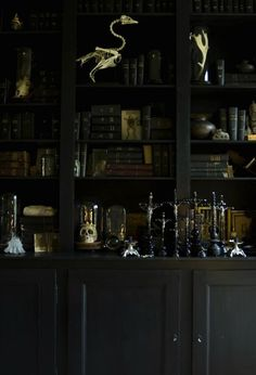 Check Out 19 Amazing Gothic Home Office Design Ideas. Combine it with Victorian, industrial, steampunk or just choose modern gothic – and your home office would be dramatic! Casa Stark, Interior Exterior, Interior Design, Interior Doors, Cabinet Of Curiosities, Up House, Gothic Home Decor, Gothic Interior, Dark Interiors