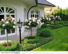 41 Fresh And Beautiful Front Yard Landscaping Ideas, - Garten Landschaftsgestaltung Boxwood Landscaping, Side Yard Landscaping, Landscaping Ideas, Landscaping Software, Backyard Ideas, Porch Ideas, Florida Landscaping, Rustic Backyard, Large Backyard
