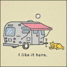Happy camping dog coffee camping, cliff camping, camping ideas tips Camping Glamping, Outdoor Camping, Camping Ideas, Airstream Camping, Camping Theme, Camping Stuff, Camping Checklist, Beach Camping, Nike Zoom