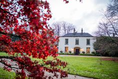 Matara's gardens are filled with acers to bring spectacular reds and yellows to autumn weddings  Photo by Courtney Louise Photography Wedding Venues Bristol, Unique Wedding Venues, Unique Weddings, Wedding Photos, Quirky Wedding, Fall Wedding, Autumn Weddings, Regency House, Asian Architecture