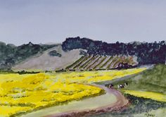 Mustard Field 2016 Watercolor 11 x 15, in white mat to 16 x 20.  $125. plus shipping Mustard, Golf Courses, Vineyard, Ship, Paintings, Watercolor, Outdoor, Pen And Wash, Outdoors