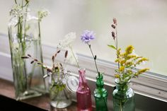 Glass vases and wildflowers