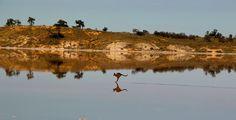 Murray Sunset National Park in Australia TvyamNb-BivtNwcoxtkc5xGBuGkIMh_nj4UJHQKuoXI2zsSXQA3-TJgrurIunAfmGCOd0ZIynRjgmQ (608×311)
