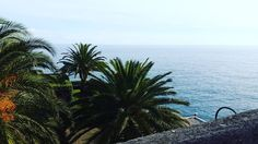 #Fontvieille Pas de filtre Invité surprise part III #insta#pict#monaco#palais#butifull#paysage# by elvira_riviera from #Montecarlo #Monaco
