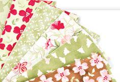 Fabric Club - Annie's Creative Quilters Fabric Club
