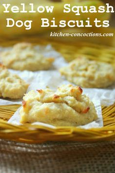 Yellow Squash Dog Biscuits #recipe #pet #dog