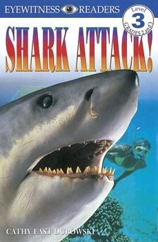 Pin On Shark Books And Toys