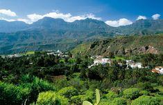 En Canarias, ¡ya es primavera!anorámica del verde paisaje de Santa Lucía de Tirajana, en la isla de Gran Canaria