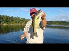 My Top 4 Bass Fishing Lures (subject to change) - YouTube