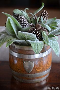 Silvery lamb's ear, sage and pinecones in an antique, oak English biscuit barrel (Three Pixie Lane)