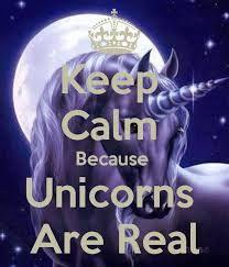 Image result for unicorns!