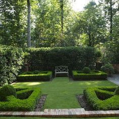 Potted Boxwood Design Ideas, Pictures, Remodel, and Decor - page 6