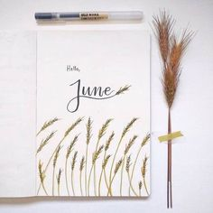 Bullet journal monthly cover page, June cover pag. - Bullet journal monthly cover page, June cover pag. Bullet Journal Nouvel An, Bullet Journal Aesthetic, Bullet Journal Notebook, Bullet Journal Ideas Pages, Bullet Journal Spread, Bullet Journal Layout, Bullet Journal Inspiration, Bullet Journal Month Page, Bullet Journal For School