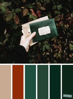 wedding colors Autumn green + burnt orange color s - Orange Color Schemes, Orange Color Palettes, Green Colour Palette, Burnt Orange Color, Green And Orange, Green Colors, Color Combos, Autumn Color Palette, Vintage Color Schemes