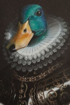 Australian artist Katrina Rhodes, who describes herself as 'a student of time and whimsy,' paints lavishly detailed, whimsical portraits of anthropomorphic birds resplendent in Elizabethan, Baroque and Edwardian attire. Art Et Illustration, Animal Heads, Australian Artists, Pet Clothes, Surreal Art, Animal Paintings, Bird Art, Pet Portraits, Art Drawings