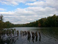 Marsh Creek State Park, October 2014