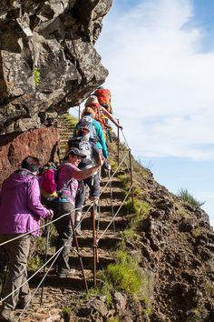 Blumeninsel-Madeira-Wandern Funchal, Hiking Trails, Bradley Mountain, Trip Planning, Paths, Hiking Boots, Africa, Island, Adventure