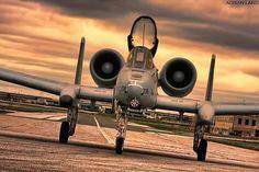 A-10 Thunderbolt ~ Adrian Lang