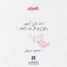 ماتَ الذينَ أُحبّهم، واللوْزُ يُزهِرُ كُلّ عامٍ بانْتظام — محمود درويش #اقتباسات #الشقاء #الشوق #فلسفة #محمود_درويش Black Books Quotes, Book Quotes, Words Quotes, Qoutes, Islamic Love Quotes, Muslim Quotes, Arabic Quotes, Fabulous Quotes, Amazing Quotes