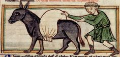 Donkey, man loading bag.. England c.1236. detail. Harley 3244 BL