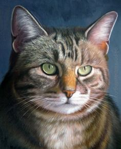 pet oil painting portrait. reminds me of my old kitty, tessie.<3