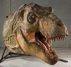 Google Image Result for http://images1.wikia.nocookie.net/__cb20120807183150/jurassicpark/images/9/98/Profiles-in-history-jurassic-park-t-rex-model-x425.jpg