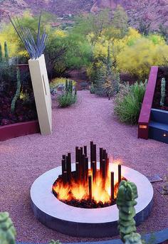 Desert color - Steve Martino landscape architect