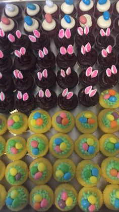 Getting Easter readyyyy! #baking #cooking #food #recipes #cake #desserts #win #cookies #recipe #cakes #cupcakes