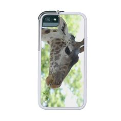 $$$ This is great for          	Cute Giraffe Cover For iPhone 5           	Cute Giraffe Cover For iPhone 5 so please read the important details before your purchasing anyway here is the best buyDiscount Deals          	Cute Giraffe Cover For iPhone 5 Online Secure Check out Quick and Easy...Cleck Hot Deals >>> http://www.zazzle.com/cute_giraffe_cover_for_iphone_5-256110902680241218?rf=238627982471231924&zbar=1&tc=terrest