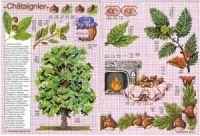 "Gallery.ru / Chispitas - Альбом ""Encyclopedie du point de croix 1998"" Le Point, Cross Stitch, Anne, Animales, Needlepoint, Flowers, Leaves, Bruges Lace, Punto Croce"