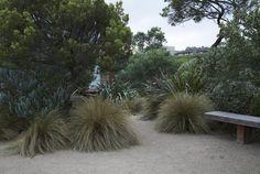 coastal, country garden design, by Fiona Brockhoff