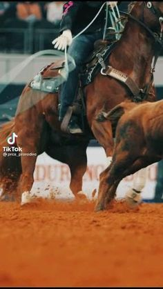 Cute Country Boys, Country Girl Life, Country Girl Quotes, Rodeo Cowboys, Hot Cowboys, Cute Horses, Beautiful Horses, Country Relationships, Rodeo Time