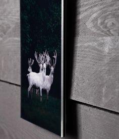 die 30 besten bilder von mit bildern dekorieren in 2019 dekorieren bilder aufh ngen und. Black Bedroom Furniture Sets. Home Design Ideas