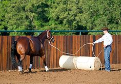 Downunder Horsemanship | Training Tip: Approach and Retreat Over Obstacles