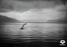 Arena swimwear: Loch Ness. I've been there!